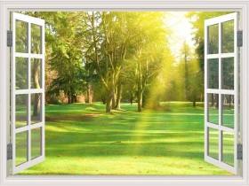 Tranh cửa sổ SCV2003