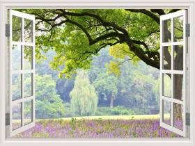 Tranh cửa sổ SPC2015