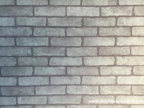 Giấy dán tường giá rẻ D125