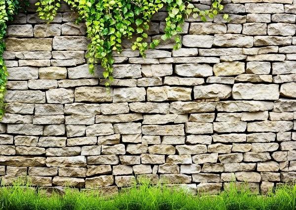 Mẫu tranh dán tường bức tường đá đơn giản với giàn dây leo