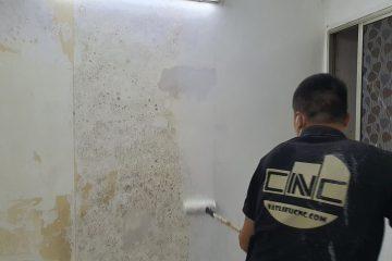 Bóc bỏ tranh, giấy dán tường cũ có làm hỏng tường không?