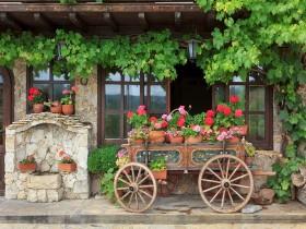 Tranh hoa lá DHL2009