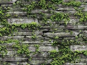 Giấy dán tường hàn quốc nature 87029-1