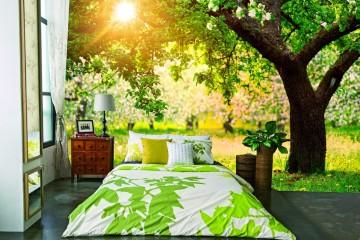 Tranh dán tường giá rẻ mang đến không gian sinh động và ngập tràn màu sắc