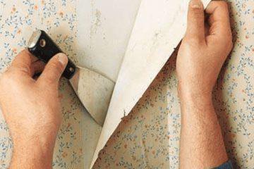 Bỏ túi ngay 4 cách bóc giấy dán tường nhanh chóng hiệu quả